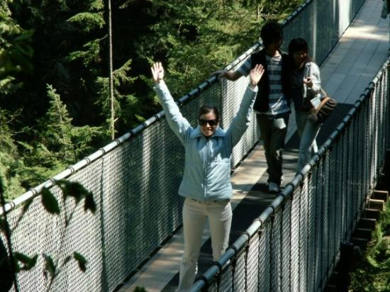 Capilano Suspension Bridge Park: Capilano suspension bridge - Vancouver