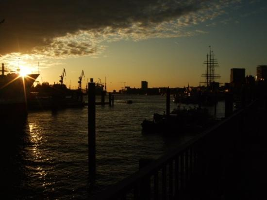 Port of Hamburg: Elbe Harbour,Hamburg