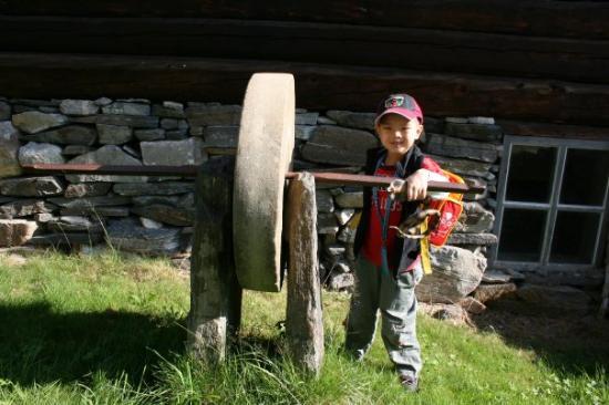 Molde Photo