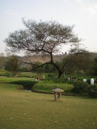 Bilde fra Pune