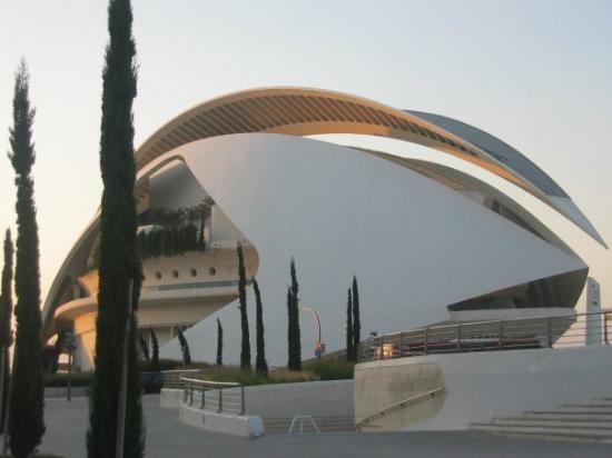 Bilde fra Oceanografic Valencia
