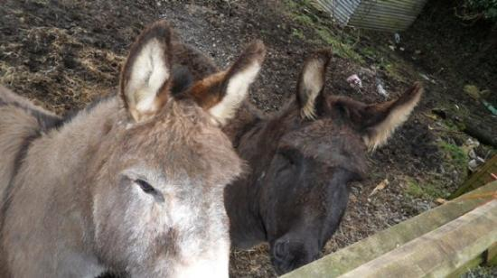 Lisnaskea, UK: 2-7-10