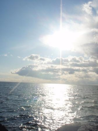 ny dag och mängder med sol.
