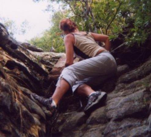 Shawnee National Forest: Is it safe up there???