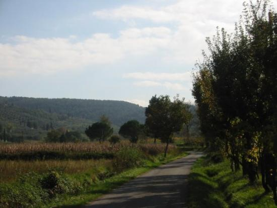 Καστιλιόν Φιορεντίνο, Ιταλία: Area surrounding Castiglion Fiorentino