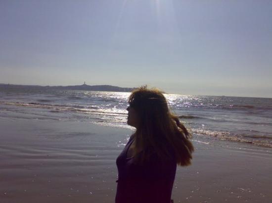 Avenida del Mar: Esa experiencia inédita de lo nunca antes visto, absoluto, indescriptible, y que vale la pena de
