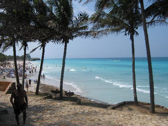 Melia Las Americas: hermosa playa