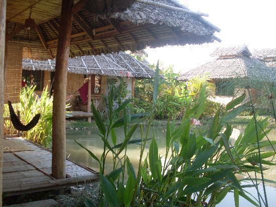 Bueng Pai Farm: My bungalow