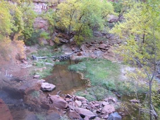 Zion's Main Canyon: Lower Emerald Pool fed by a small waterfall