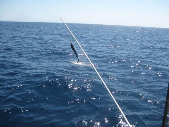 Gulf of Papagayo, Costa Rica: Sailing away