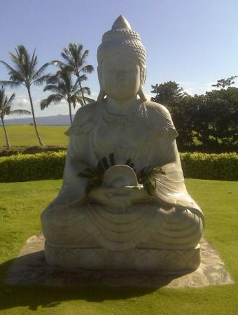 buddha point hawaii quot buddha point quot kona hi picture of kohala suites by 10135