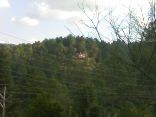 A Guest House on Hill in Ranikhet