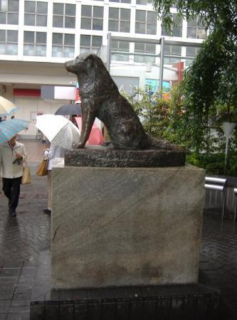 The statue of Hachiko outside JR Shibuya Station is a common meeting place in Shibuya.  BTW, the