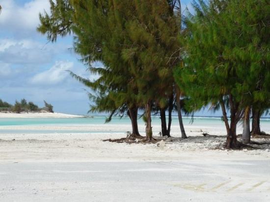 Bilde fra Wake Island