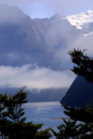 Milford Sound, Nouvelle-Zélande : Harrison Cove misty