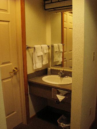Mt. McKinley Princess Wilderness Lodge: The sink - which was located outside the bathroom