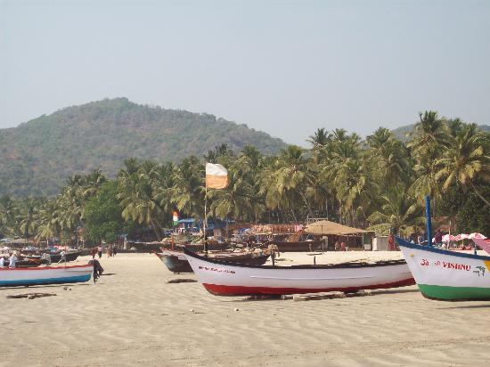 Goa, India: playa palolem
