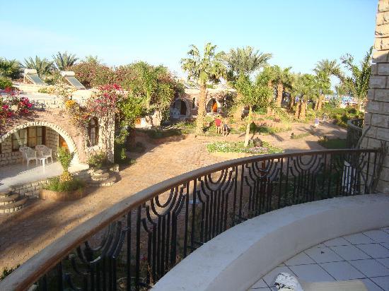 Aladdin Beach Resort: View from balcony