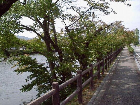 Sasayama, Japonya: 濠の周りは絶好の散歩コース