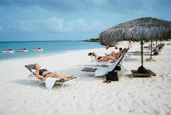 ... Foto di Amsterdam Manor Beach Resort, Palm/Eagle Beach - TripAdvisor