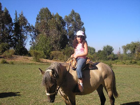 Colbun, Chile: Paseo