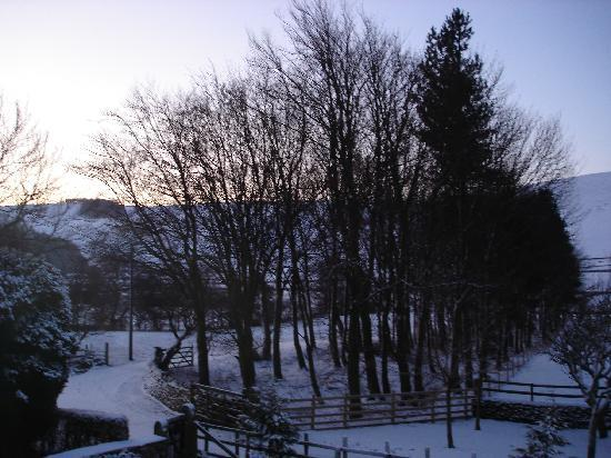 Dunscar Farm Bed and Breakfast: View from our room