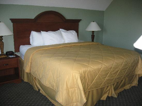 Comfort Inn Madison: King Bed - Rm 319 - Honeymoon Suite