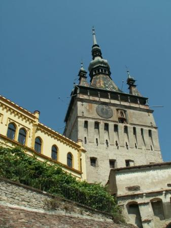 Sighisoara Picture