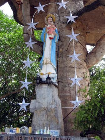 The Shrine of Our Lady of La Vang : Our Lady of La vang