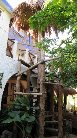 Amar Inn B&B: Rustic staircase up to penthouses.