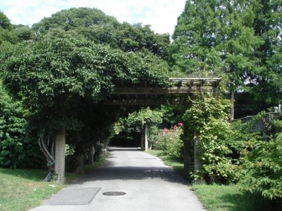 Brooklyn Botanic Garden Picture Of Brooklyn Botanic Garden Brooklyn Tripadvisor