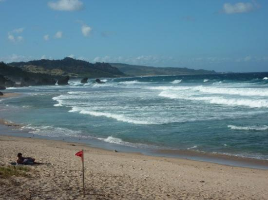 the Atlantic side of the island Bathsheba, Barbados SOUP BOWL SURFING AT BATHSHEBA  The Soup Bow
