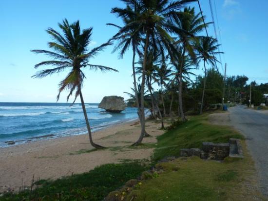 Bathsheba Beach: Bathsheba, Barbados