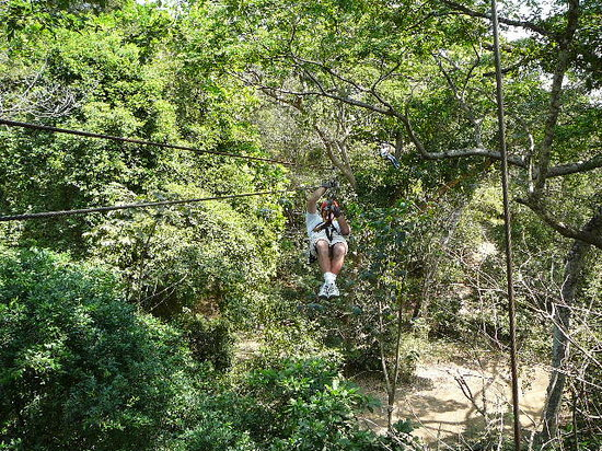 ‪The Congo Trail Canopy Tour‬
