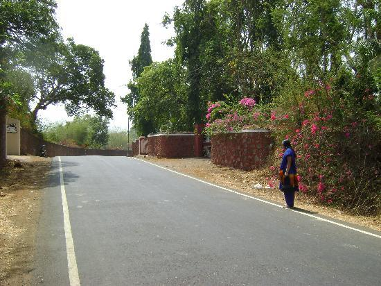 Karnala, Indien: Village Road