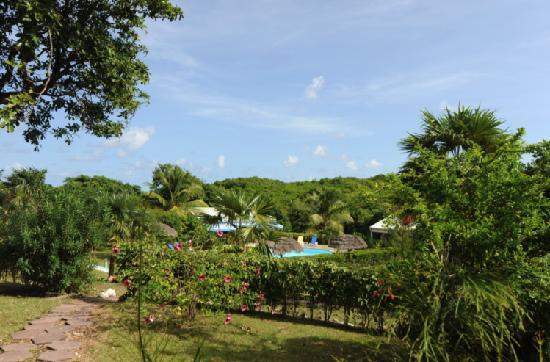Village de Menard: Jardin tropical