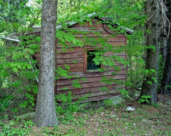 somebody's old shed, Otis MA
