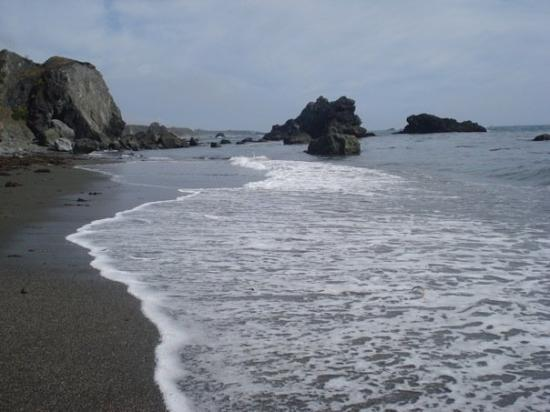 Bodega Bay Ca Shell Beach United States