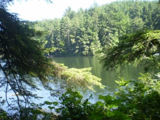 Winchester Bay, Όρεγκον: Beautiful Lake Marie at Umpqua Lighthouse State Park. A hidden little gem.