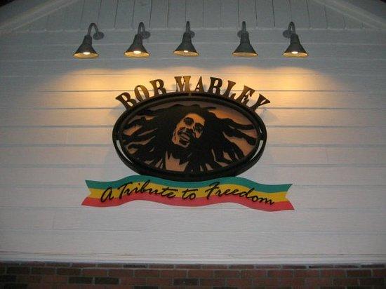 Bob Marley A Tribute to Freedom : Bob Marley again