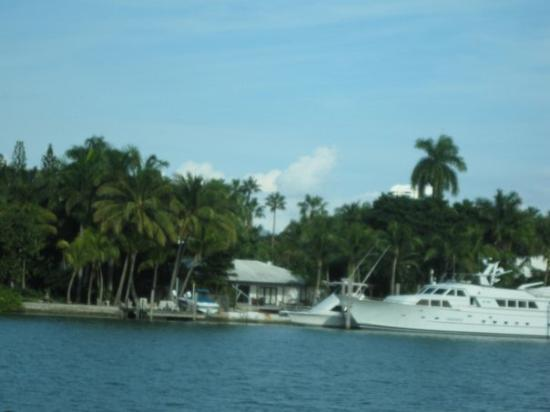 South Miami, FL: First street of houses on Star Island, Miami Beach