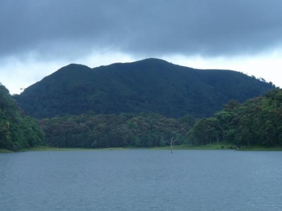 Thekkady, India: Karala, the Indian jungle & one of the most beautiful places I've been. I think the best part of