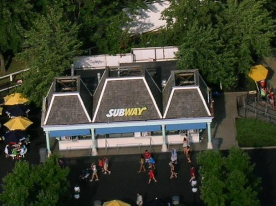 Kings Island: The Subway looked kinda cool from the top of the KI Eiffel Tower