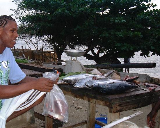 Jemas Guesthouse and Apartments: fresh fish with the best cook of island: Gerrit