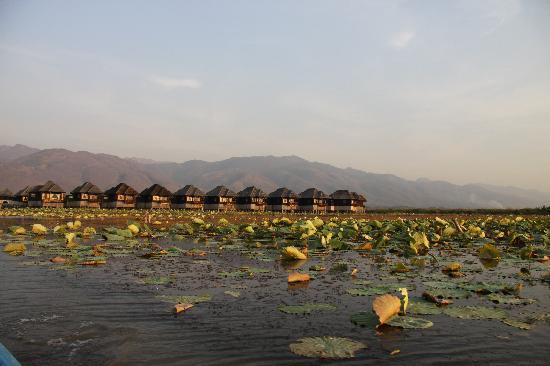 Myanmar Treasure Inle Lake : General view