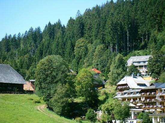 Hinterzarten, Niemcy: Hotel oben links