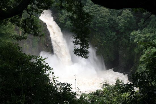 Minamiaso-mura, ญี่ปุ่น: 数鹿流ヶ滝