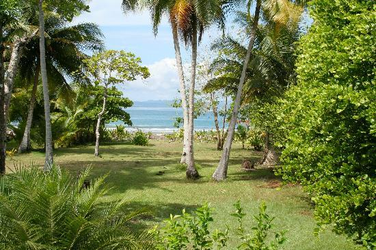 Playa Zancudo, Costa Rica : garden leading to the sea