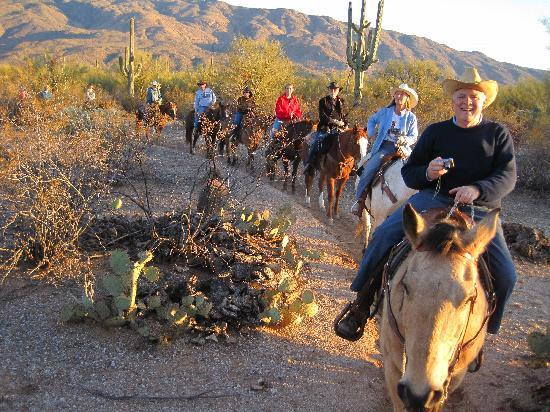 Houston's Horseback Riding: Sunset ride-riding past saguaros