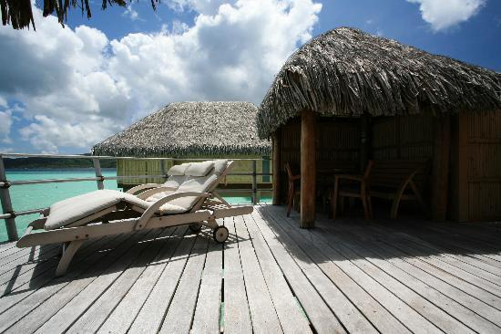 Le Taha'a Island Resort & Spa: Our sun-loungers always look sooo inviting
